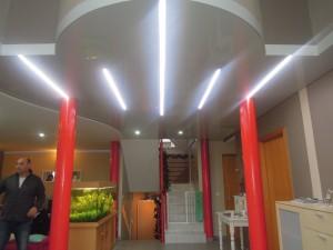 Hall d'entrée - plafond-tendu